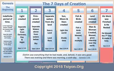The Shebua of Creation