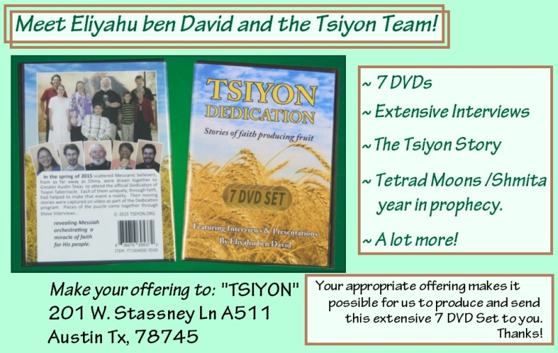 Tsiyon Dedication 7 DVD Set