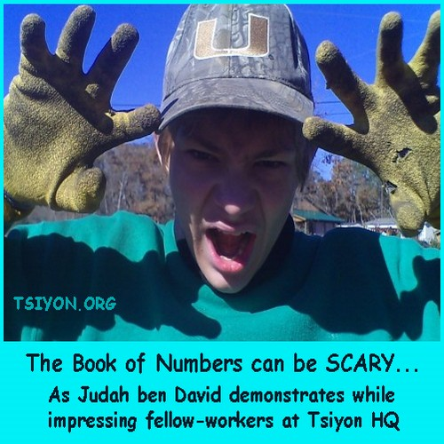 Scary Book of Numbers