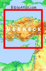 Mesheck in Turkey