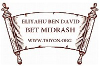 Join us for Torah Study!