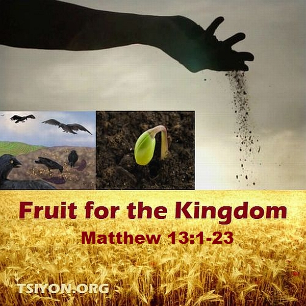 More Fruit for the Kingdom!