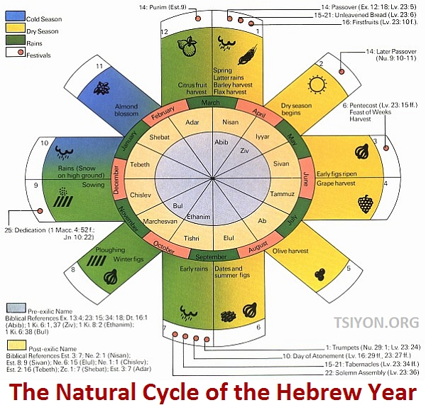The Natural Cycle of the Hebrew Year
