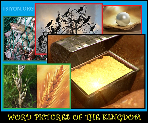 Word Pictures of the Kingdom