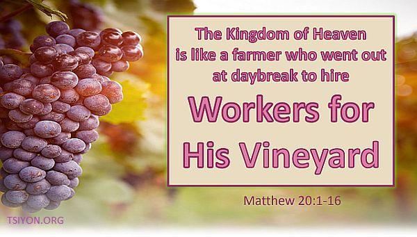 Workers in His Vineyard