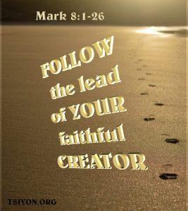 Follow your faithful Creator