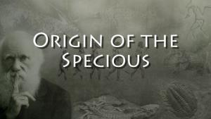 Origin of the Specioius