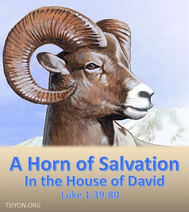 He is a horn of salvation!