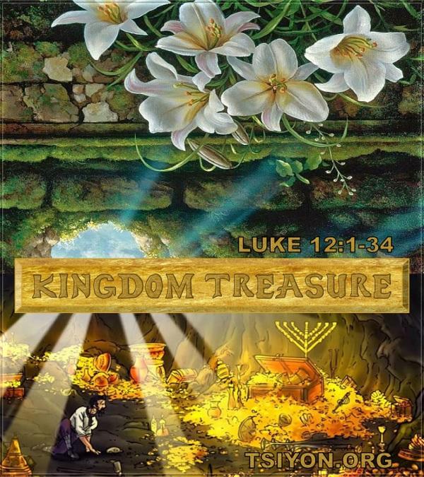 Kingdom Treasure