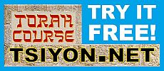 Free Torah Course!