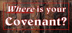 Where is your covenant?