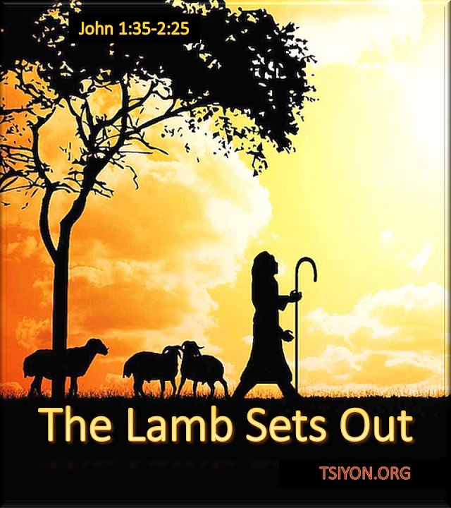 The Lamb sets out.