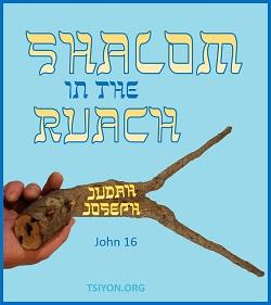 Shalom to you!