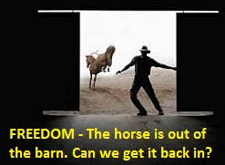 The horse is out of the barn.