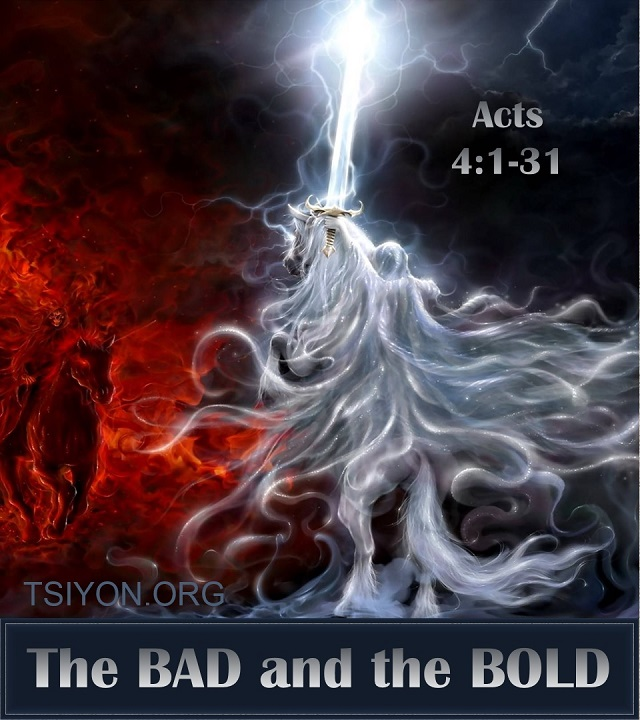 Bad or bold?