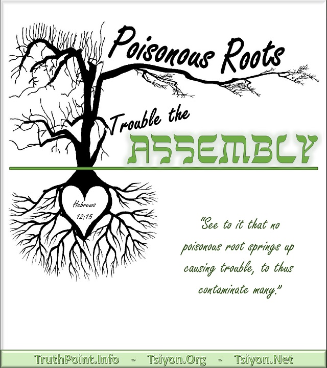 Poisonous Roots Trouble the Assembly Hebrews 12:15