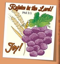 An amazing season of joy!