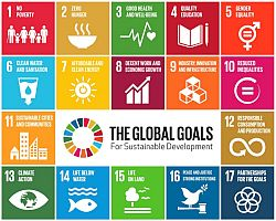 Global Goals - says who?