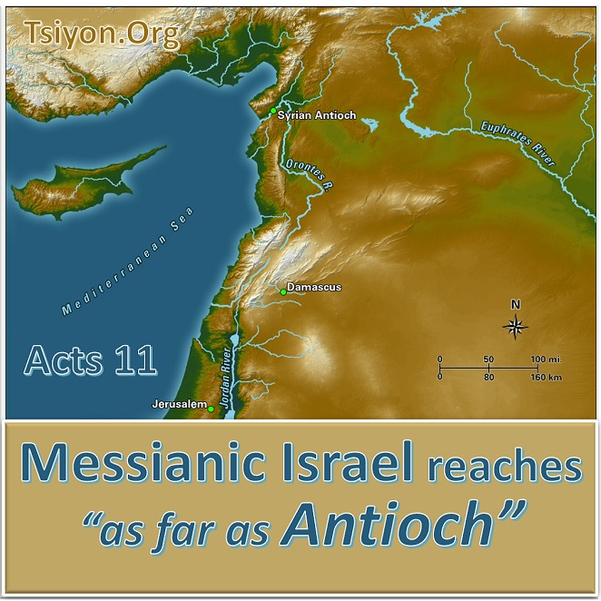 Image showing map of Israel and Mediterranean and text: Tsiyon.org, Acts 11, Messianic Israel reaches as far as Antioch