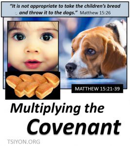 Multiplying the Covenant