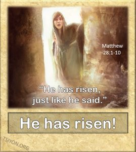 He has risen. Just like He said!