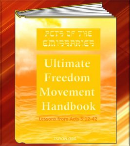 Image of Actos of the Emissaries Acts 5 verses 12 thru 42 the Ultimate Freedom Movement Handbook